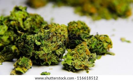 Cannabis 2. High grade purple kush marijuana against a white background. - stock photo