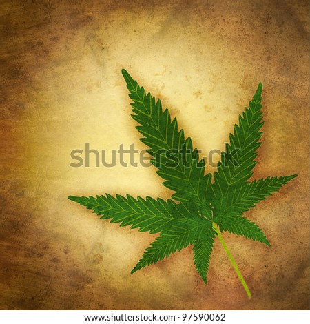 cannabis leaf in grunge style - stock photo