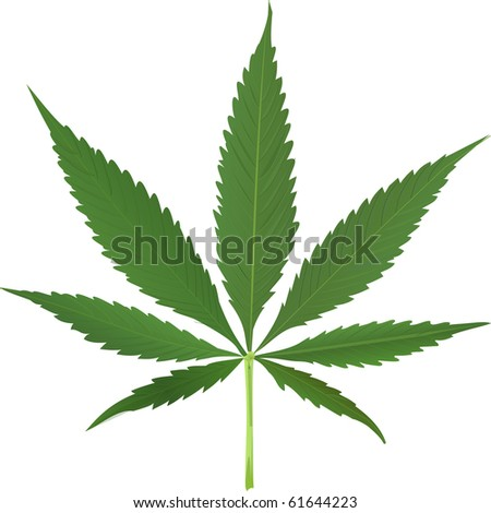 cannabis leaf isolated on white background, abstract art illustration; for vector format please visit my gallery - stock photo