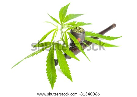 Cannabis. Marijuana leaf, pipe and ready to use dry product isolated on white background