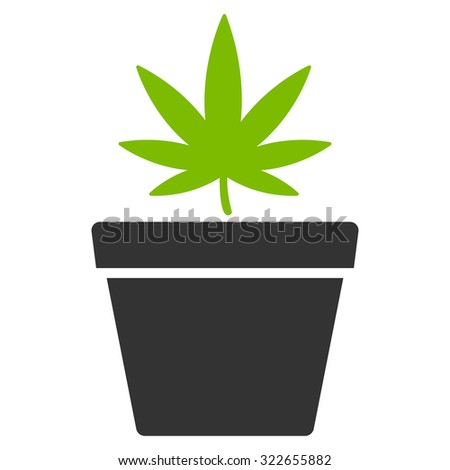 Cannabis Pot glyph icon. Style is bicolor flat symbol, eco green and gray colors, rounded angles, white background. - stock photo
