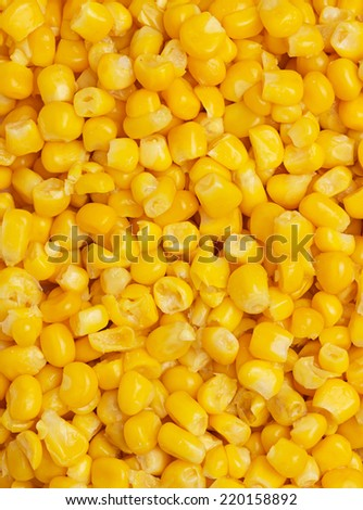 Canned corn background or texture - stock photo