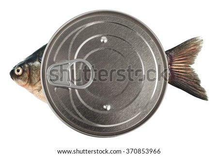 Canned fish - stock photo