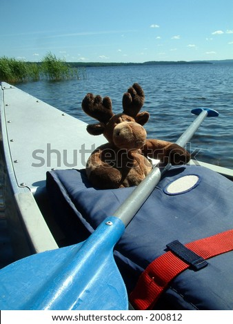 Canoeing moose.