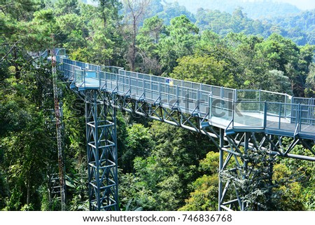 Canopy Walkway At Queen Sirikit Botanic Garden Chiangmai,Thailand