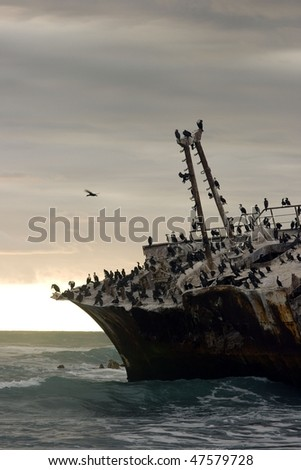 Cape Aghulas shipwreck with birds at sunset - stock photo