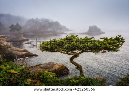 Cape Flattery United States. Washington State on the Olympic Peninsula - stock photo