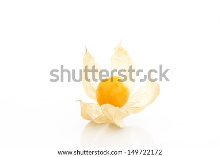 Cape gooseberry (physalis) over a white background - stock photo