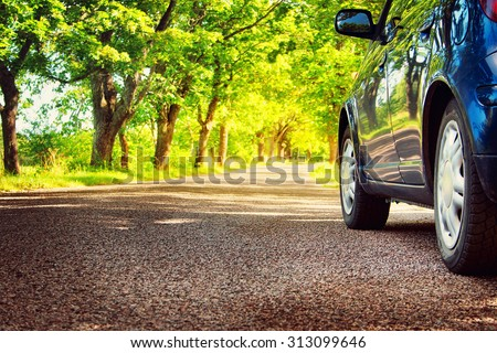 Car on asphalt road on summer day at park - stock photo