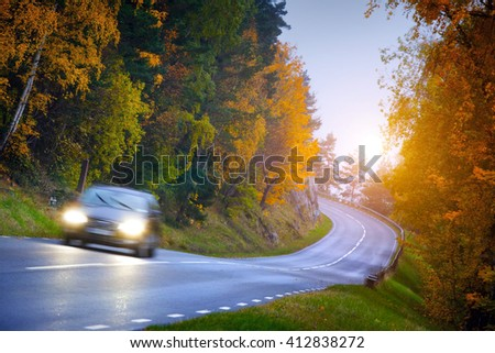 Car on the road in the fores - stock photo