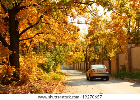 Car will go along the road. Autumnal trees. - stock photo