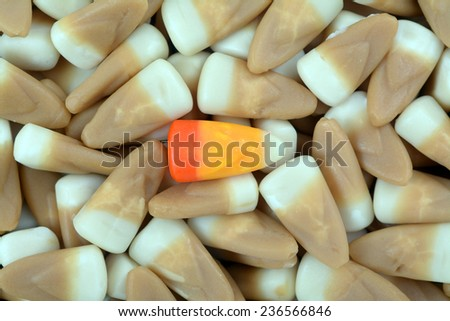 caramel and honey candy corn for background and texture  - stock photo