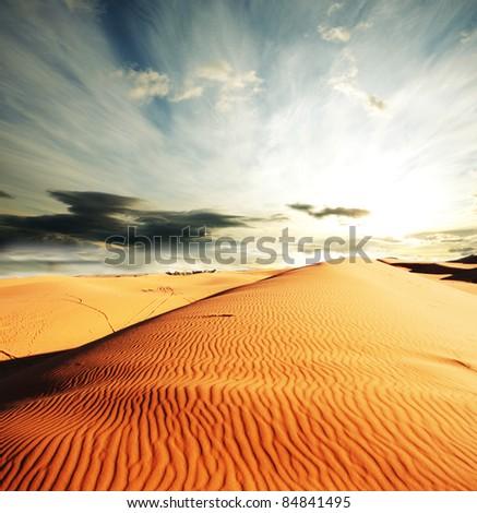 Caravan in Sahara desert - stock photo