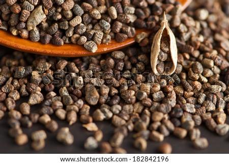 cardamom seeds & a pod - stock photo