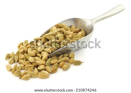 cardamom seeds on an aluminum scoop on a white background - stock photo