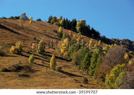 Caregno (Bs),Val Trompia,Lombardy,Italy, the colors of autumn,trees