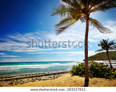 Caribbean beach and tropical sea in Haiti - stock photo