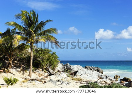 caribbean beach in summer in Mexico - stock photo