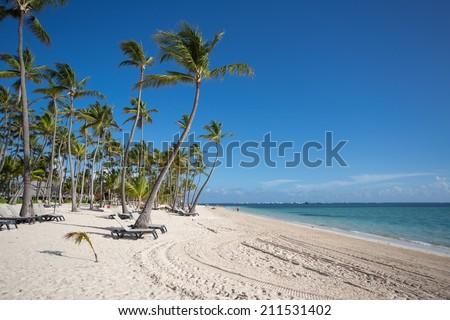 Caribbean Beach on a sunny day - stock photo