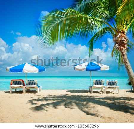 Caribbean Beach.Paradise.Vacation and Tourism concept. Sunbeds and Palm - stock photo