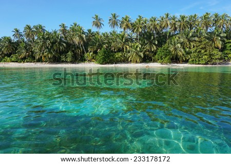 Caribbean beach with lush tropical vegetation and clear water, viewed from the sea