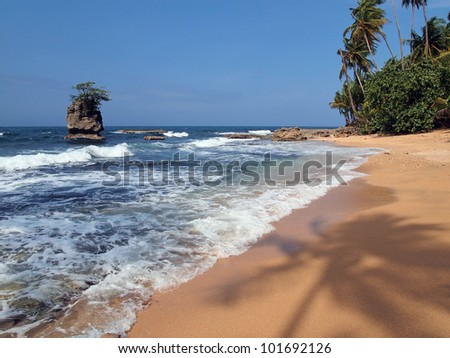 Caribbean beach with silhouette of palm tree on the sand and a rocky islet, Costa Rica, Manzanillo - stock photo