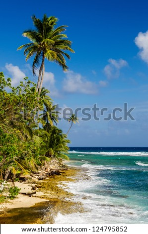 Caribbean coastline with blue water and palm trees of San Andres y Providencia, Colombia