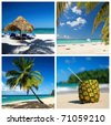 Caribbean collage with palm and tropical beach - stock photo