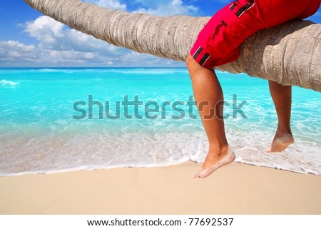 Caribbean inclined palm tree beach trunk sitting tourist legs [Photo Illustration]