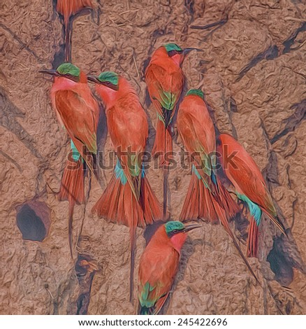 Carmine bee eaters at nesting site - stock photo