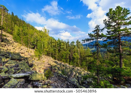 Carpathian Mountain summer landscape with sky and cumulus clouds, pathway, fir forest and slide-rocks (Ihrovets, Ukraine).