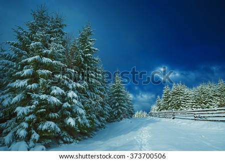 Carpathian mountain valley covered with fresh snow. Winter time. Ukraine, Europe