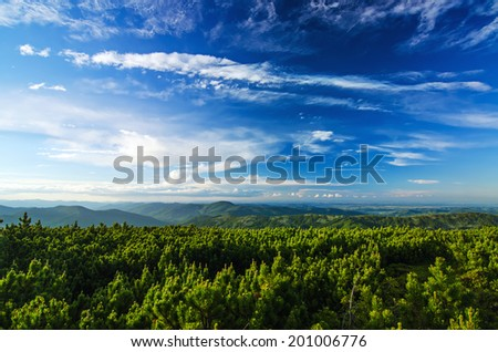 Carpathian mountains summer  sunset landscape with blue sky and green forest - stock photo