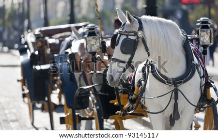 carriage typical Andalusian (southern Spain)
