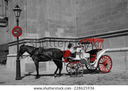 Carriage with horse in Palma de Mallorca, Majorca, Spain  - stock photo