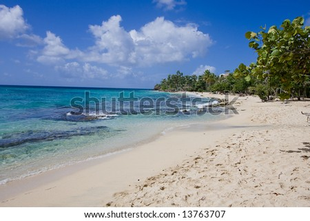 carribean Beach with clear water - stock photo