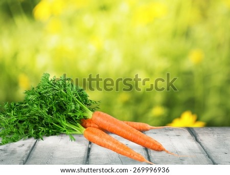 Carrot. Carrot vegetable with leaves isolated on white background cutout - stock photo