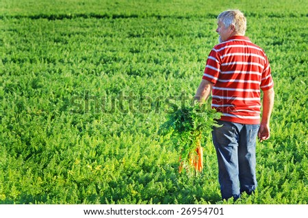 carrot farmer with a bunch of carrots in his hand - stock photo