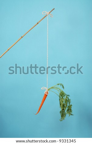 Carrot on a stick on blue background - stock photo