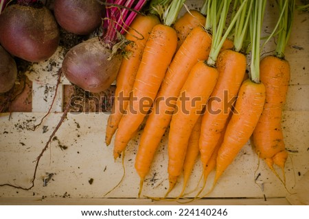 Carrots and Beetroot - stock photo