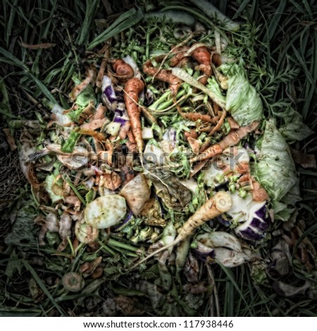 Carrots and various kinds of vegetables on a Compost Heap/Artistically alienated to create a grungy somber atmosphere - stock photo