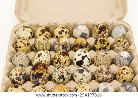 Carton of quail Eggs in white background - stock photo