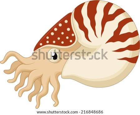 Cartoon nautilus - stock photo