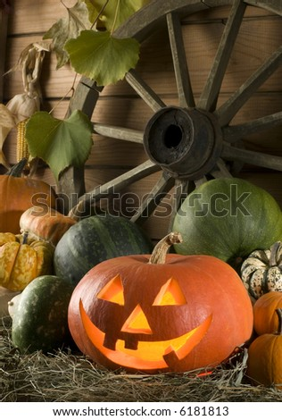 carved halloween pumpkin at night close up shoot - stock photo