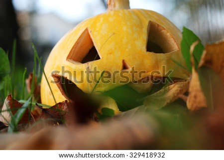 carved Halloween pumpkin on lawn