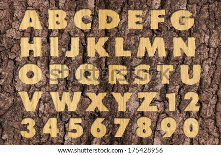 Carved Oak wood alphabet - stock photo