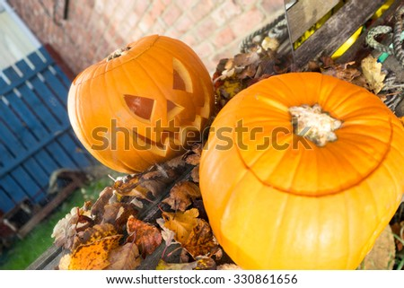 Carved pumpkin on a bench surrounded by leaves, looking into a mirror.   The reflection is in focus. - stock photo