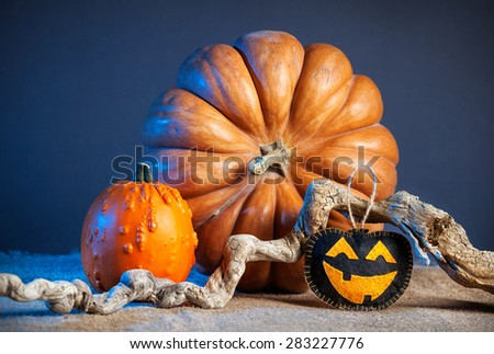 Carved pumpkin toy from felt and decorative pumpkins on the table at Halloween party  - stock photo