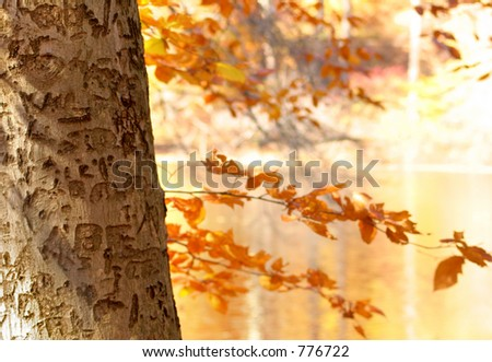 Carvings - stock photo