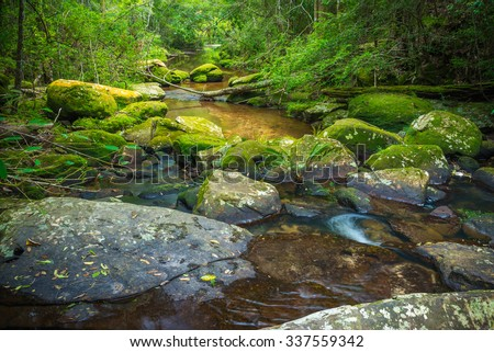 Cascade falls over green mossy fern rocks in Phukradung national park Thailand - stock photo